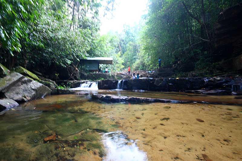 Rain Forest Tours in Sri Lanka   Rain Forest Camping   Sri